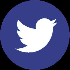 Twitter France Dirigeant